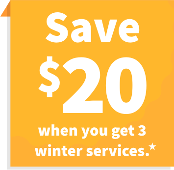 Save $20 when you get 3 winter services