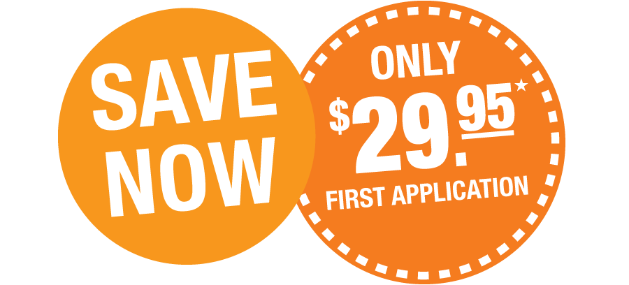 Save Now | Only $29.95 First Application